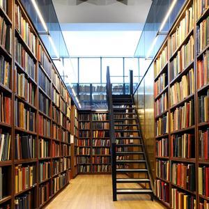 Библиотеки Рузы